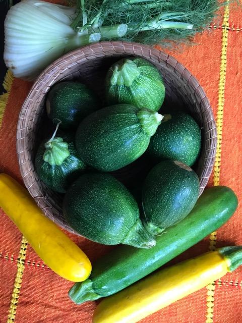 image-zucchinibasket11-16post