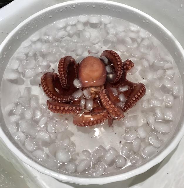 Image.OctopusIce