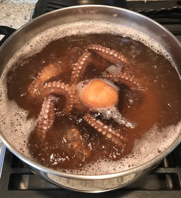 Image.OctopusinPot